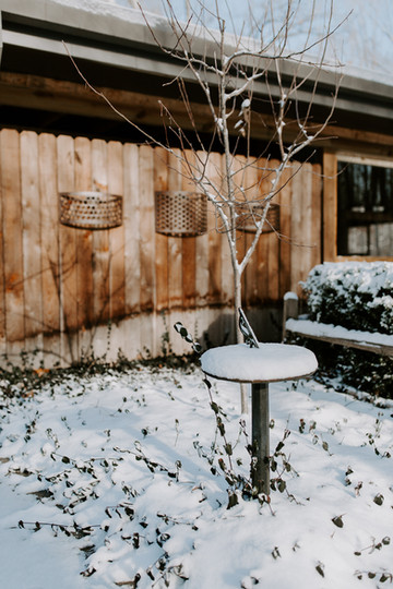 Gallery-winter-2-2.jpg