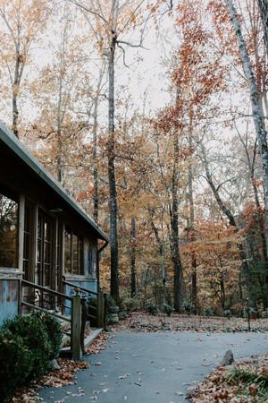 November 25-10.jpg