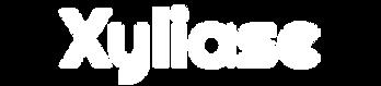 logo_fix.png