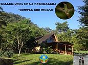 Taller-Naturaleza-Mindo.png