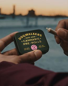 GT Walkers Dog Walkers PreRoll Cannabis.