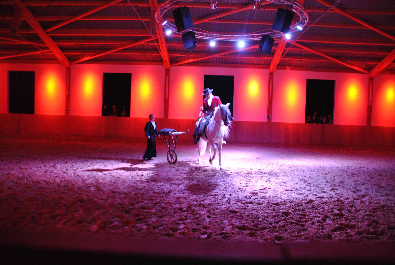 Flamenco - Reitvorstellung