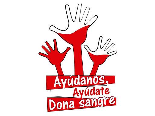 XX donación de sangre