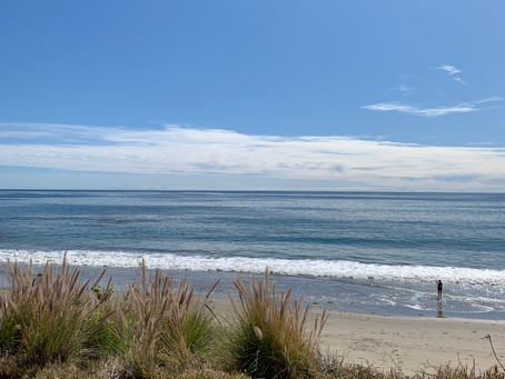 The Great Wide Ocean