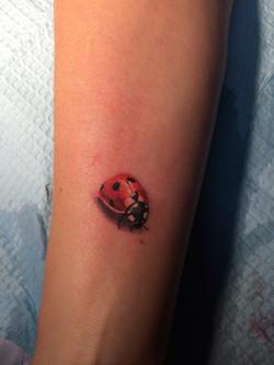 coccinel-tattoo-maxime lanouette