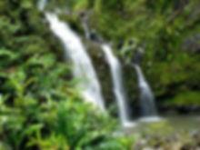 waterfall-969228_1280.jpg