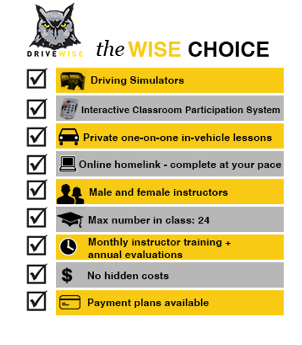 Infographic | Driving School | Driving Training