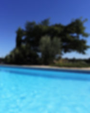 piscine1 pour site.jpg