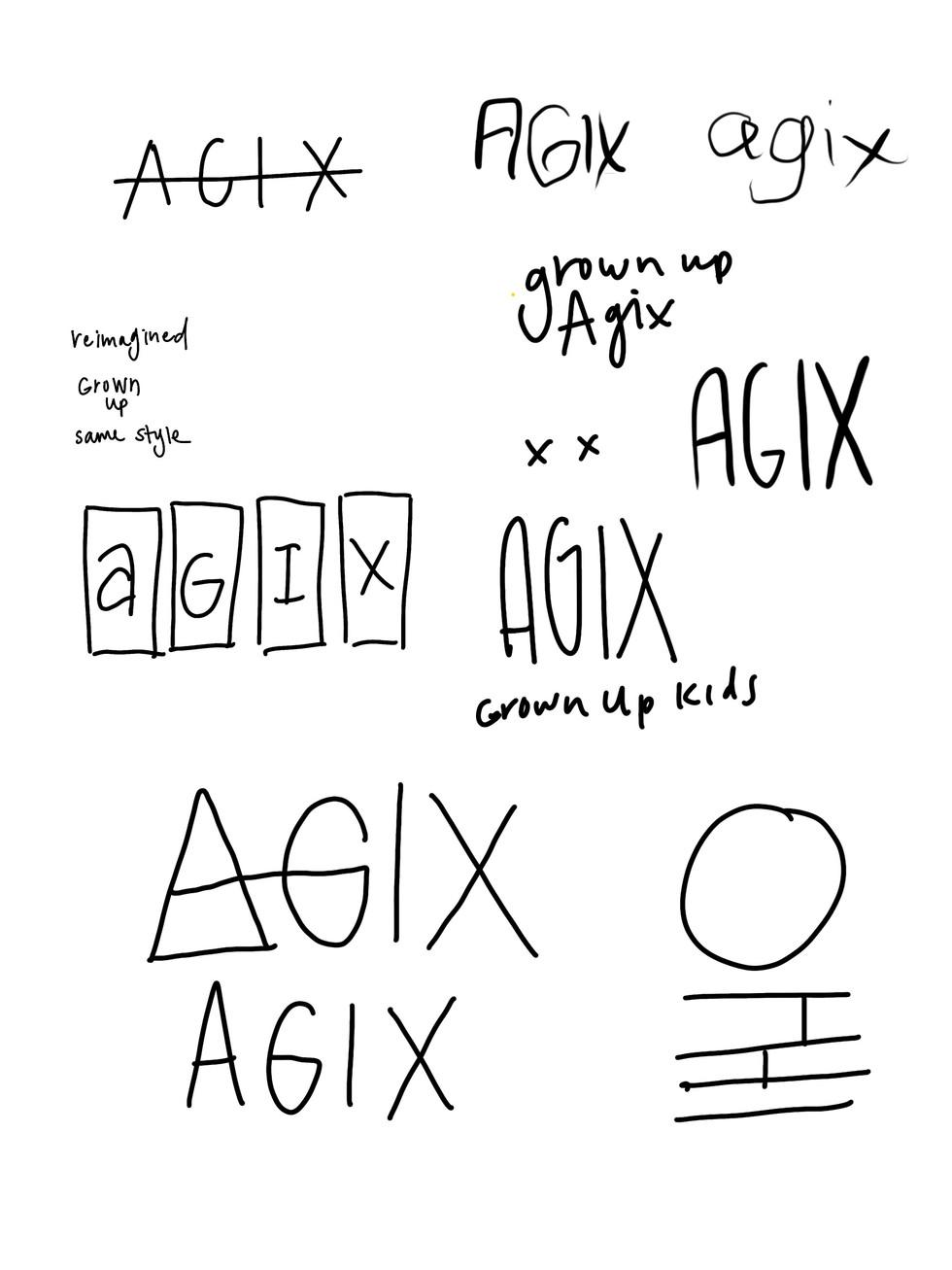 agix concept.jpg