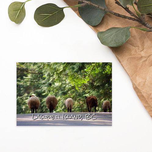 Standard Postcard