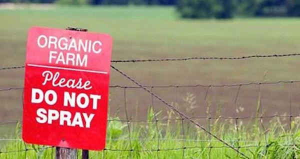 Organic Farm Please Do No Spray Sign. 5 Reasons I Eat Organic