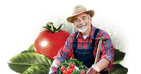 Proud Farmer and his organic produce. Why Organic