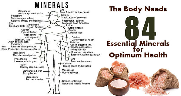 Body showing all 84 minerals needed for optimum health.