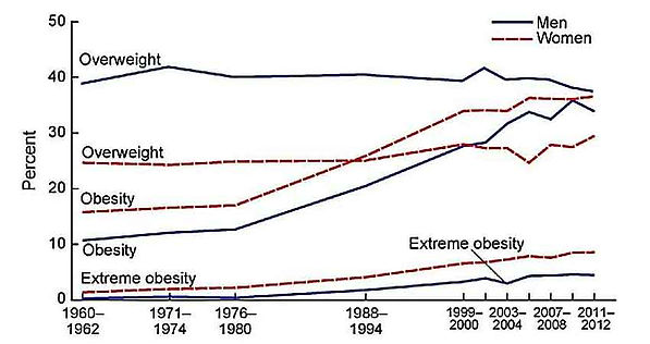 Graph of obesity trend lines from 1960 to 2012.