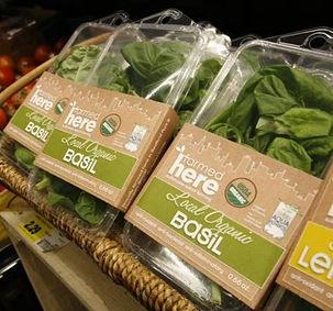 Package organic Basil grocery shelf display.