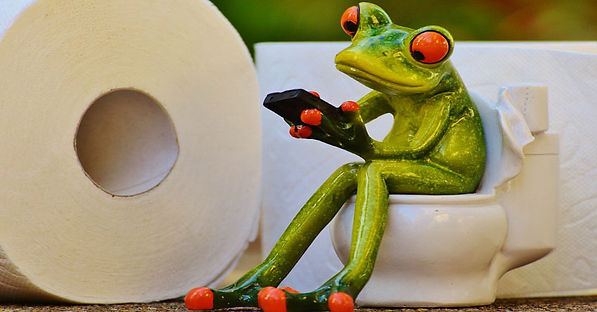 Little frog sitting on the toilet reading his phone.