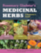 Medicinal Herbs a Beginner's Guide book by Rosemary Gladstar