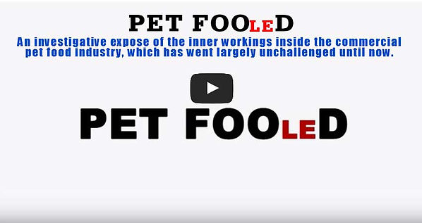 YouTube Video trailer Pet Fooled.