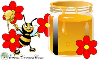 Honey: A Sweet Illusion