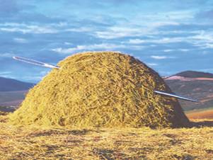 Needle in a Haystack?