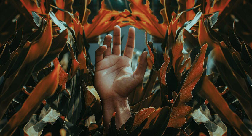 Hand Reaching Up Through Orange Leaves - Ready for Change