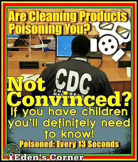 Are Cleaning Products Poisoning You.jpg