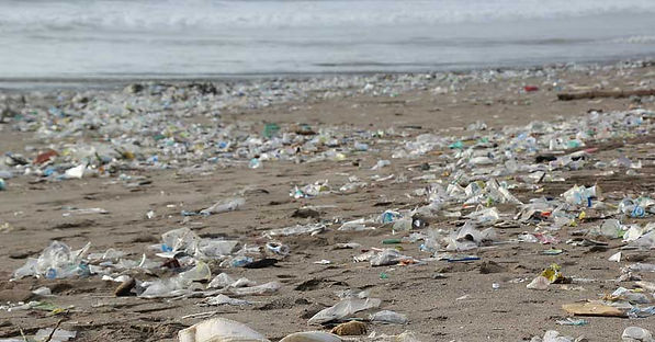 Beach covered in plastic.