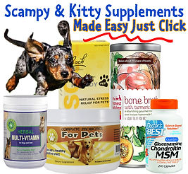 Scampy and his store advertisement for dog and kitty supplements.