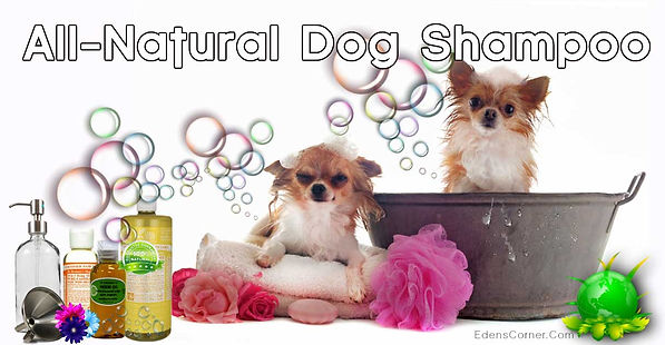 DIY All-Natural Dog Shampoo pups in a tub and bubbles.