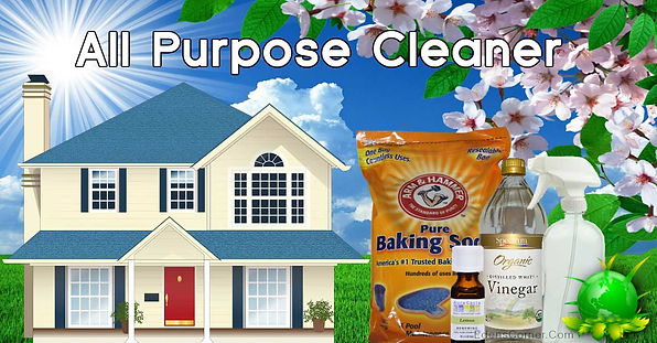 House-Yard and the title All Purpose Cleaner