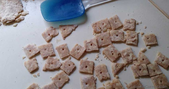 Dough cut up in little craker size treats