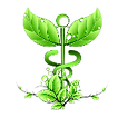 Green Medical Logo with plants