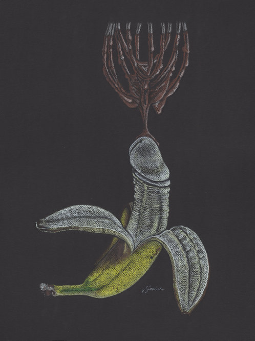 Banana 'Whipped'