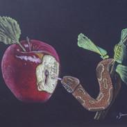 """""""Apple & Eve'L"""""""