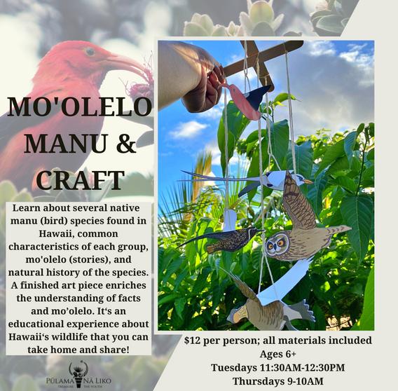 Mo'olelo Manu Workshop