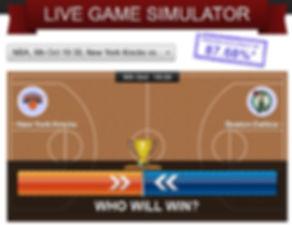 simulator_example1[1].jpg