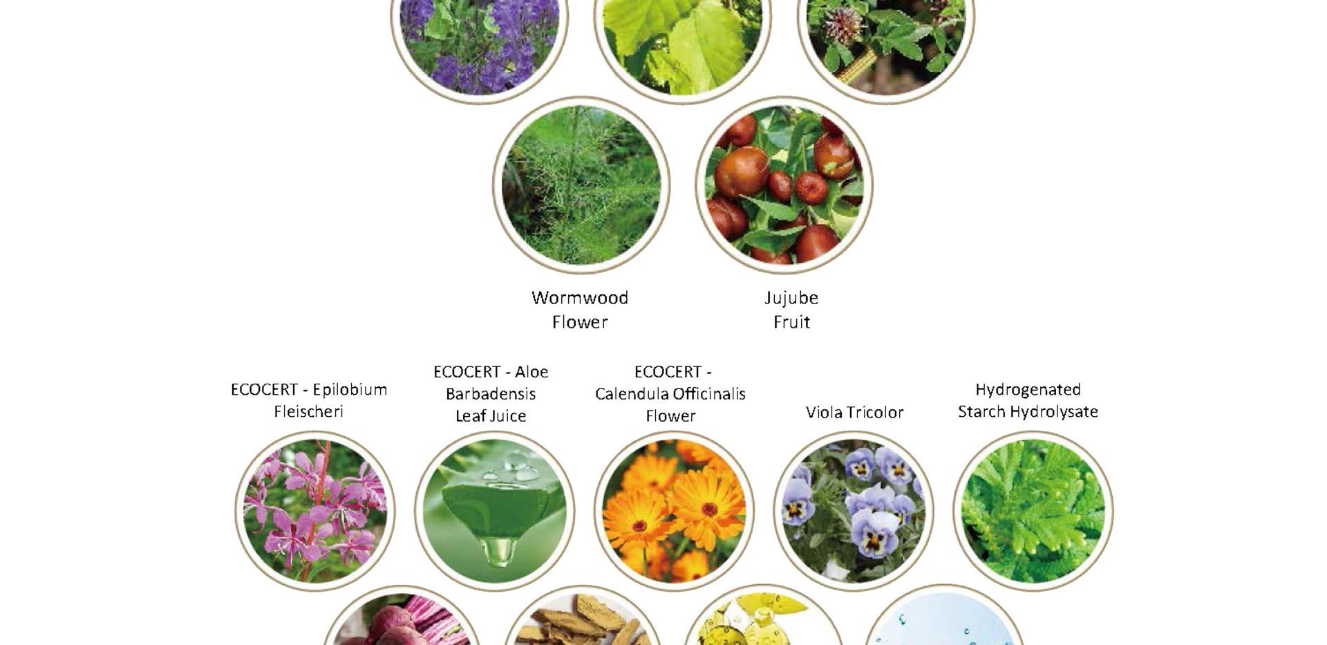 Chinese herbal medicine & Natural ingredients