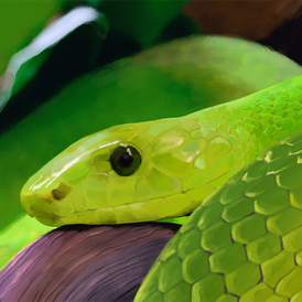 Paint Study: Green Mamba
