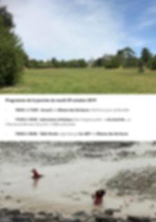page site AEP 2.jpg