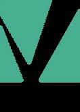 VISIO.png
