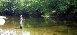 La pêche dans les Vosges