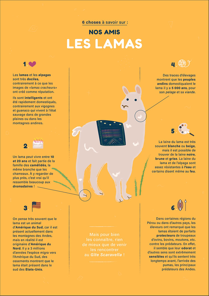 Affiche infographie Lama.jpg