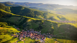 La route des vins d'Alsace ...