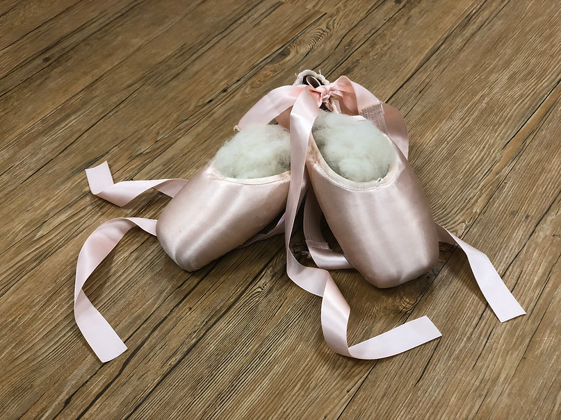 Capezio Pointe Shoe at Lucy and Ethels