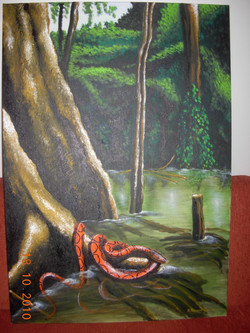 Βόας του Αμαζονίου