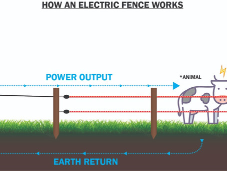 Earthing Your Electric Fence in 2021