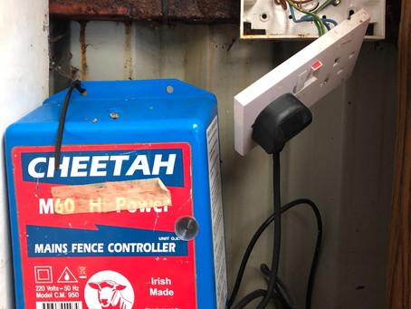 10 Common Electric Fencing Mistakes To Avoid!