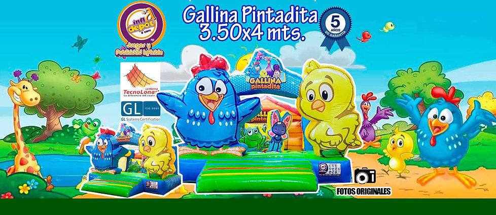 gallinita.jpg