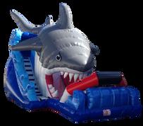 Shark 10.30X4.70 MTS.