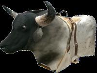 Toro Mecánico de lujo capacidad 170 kilos